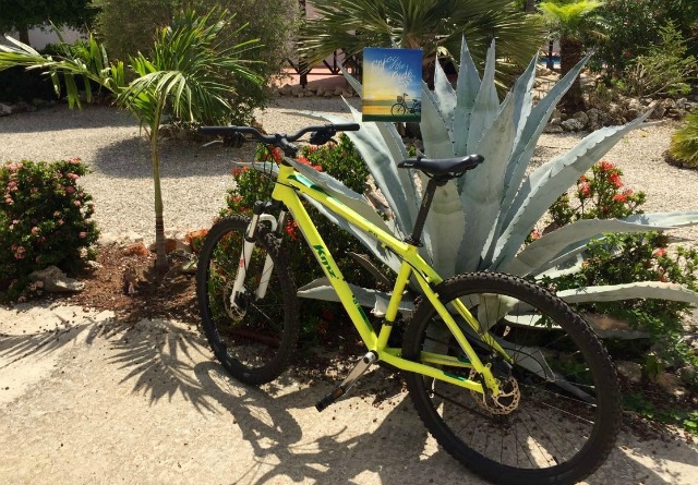 Our Top 10 List Villa Lunt Bonaire Vacation Rental Bicycle