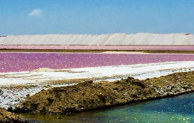 Villa Lunt Bonaire salt ponds Bonaire