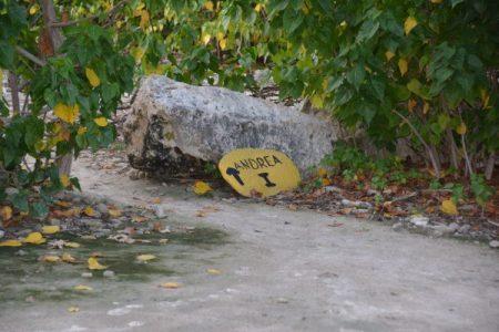 Bonaire Dive Sites Villa Lunt Bonaire Vacation Rental