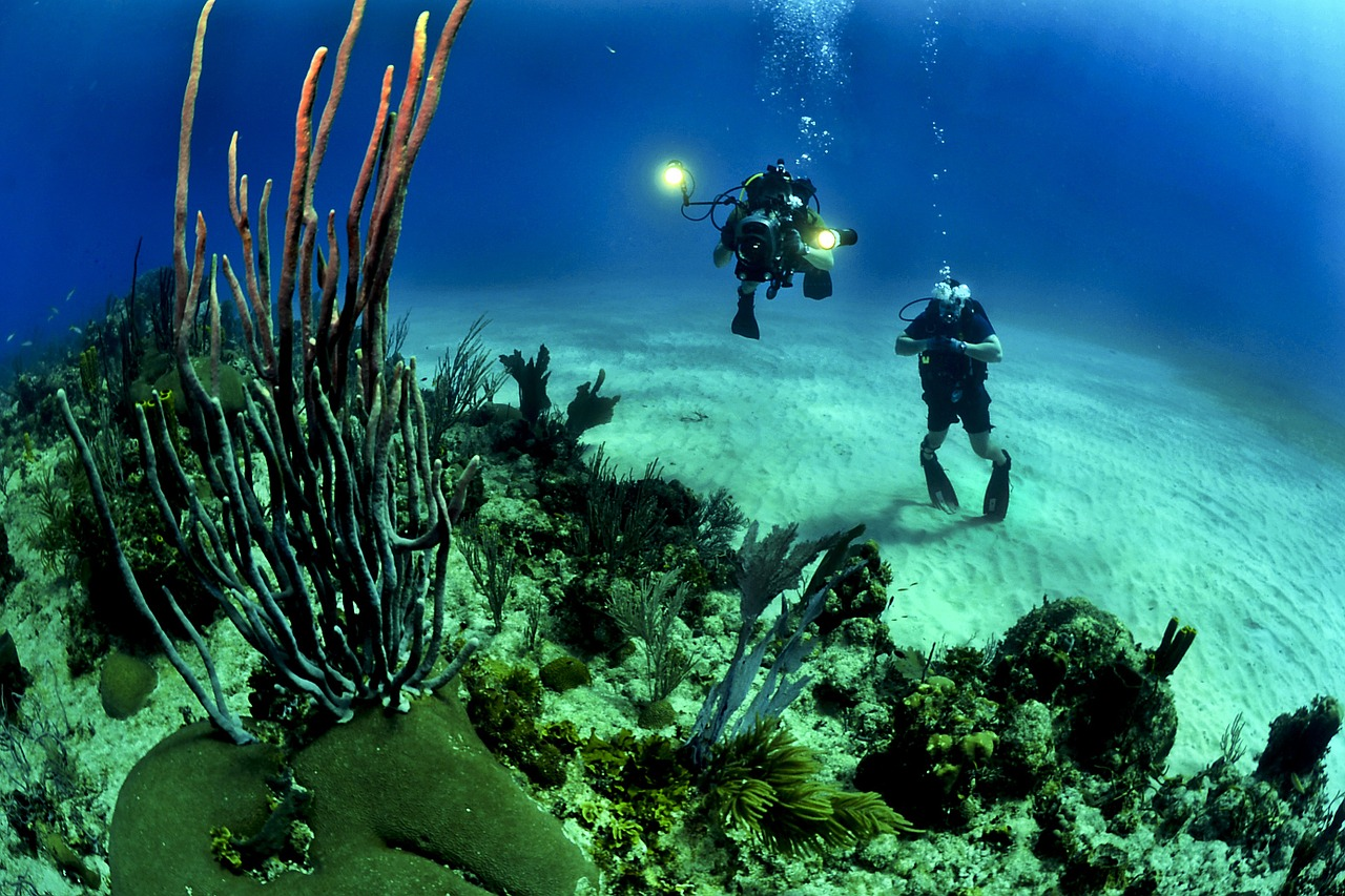 Scuba Diving on Bonaire